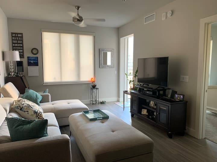 Luxury 1 Bed Apt in the heart of Downtown St Pete