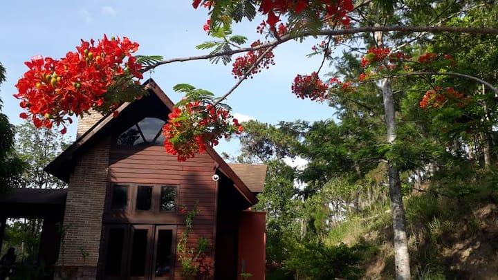Cabaña rústica (roja)