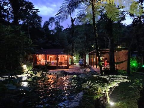 Momento de paz , piscina natural exuberante nature