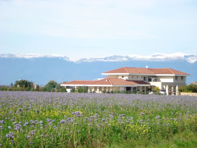Magnificent, peaceful  house border to Geneva. - Veigy-Foncenex - House