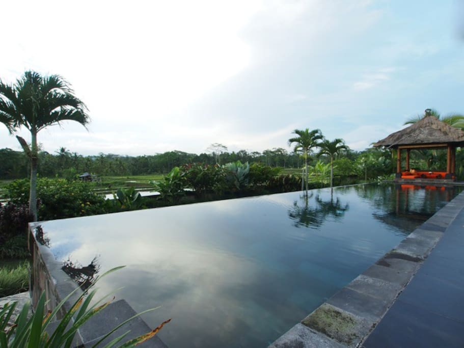 18m x 4m private pool with rice field view