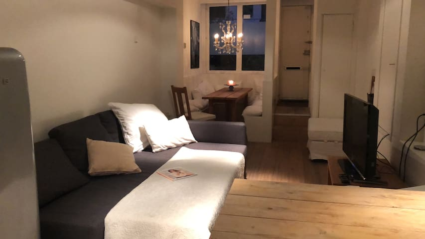 Cozy downstairs apartment in Centre Amsterdam!!