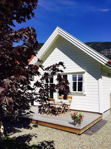 Nytt Aneks innerst i Sognefjorden - Lærdal - Pis