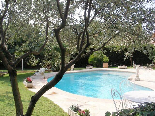 Big Villa with swimming pool and 1300m garden - Roquebrune-sur-Argens