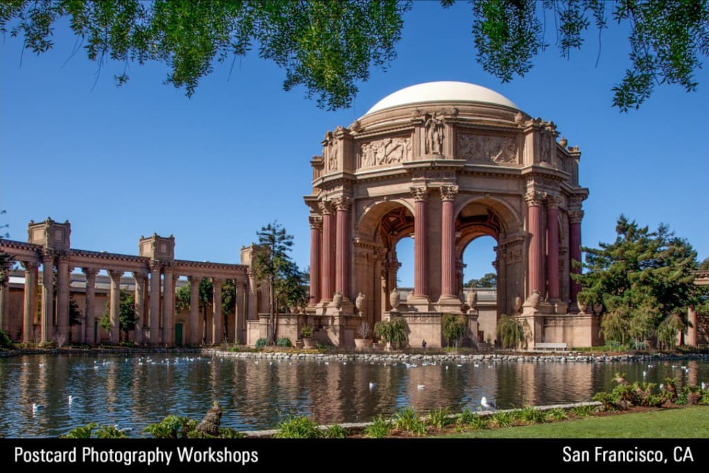 Just a few blocks away is the Palace of Fine Arts. A beautiful public park area at the end of our street. Go for the white swans, stay for the beautiful architecture.