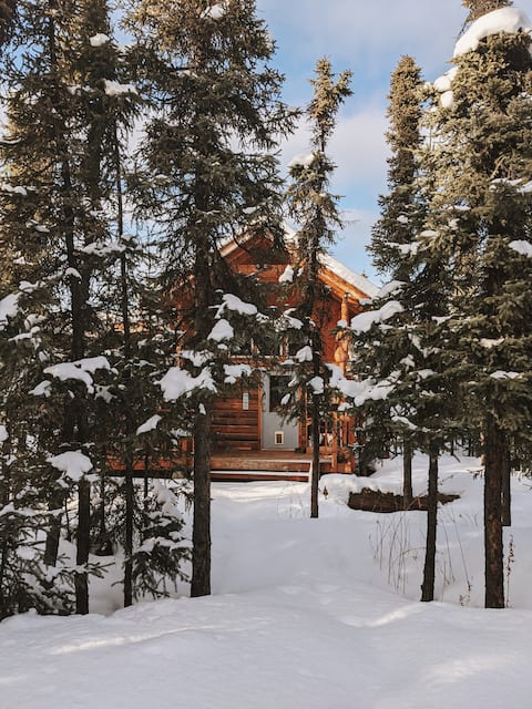 森の中の小さなアラスカの小屋、レンジャーの避難所