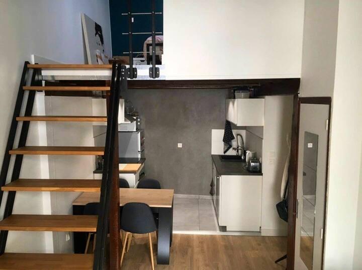 Duplex cosy Part dieu/Garibaldi