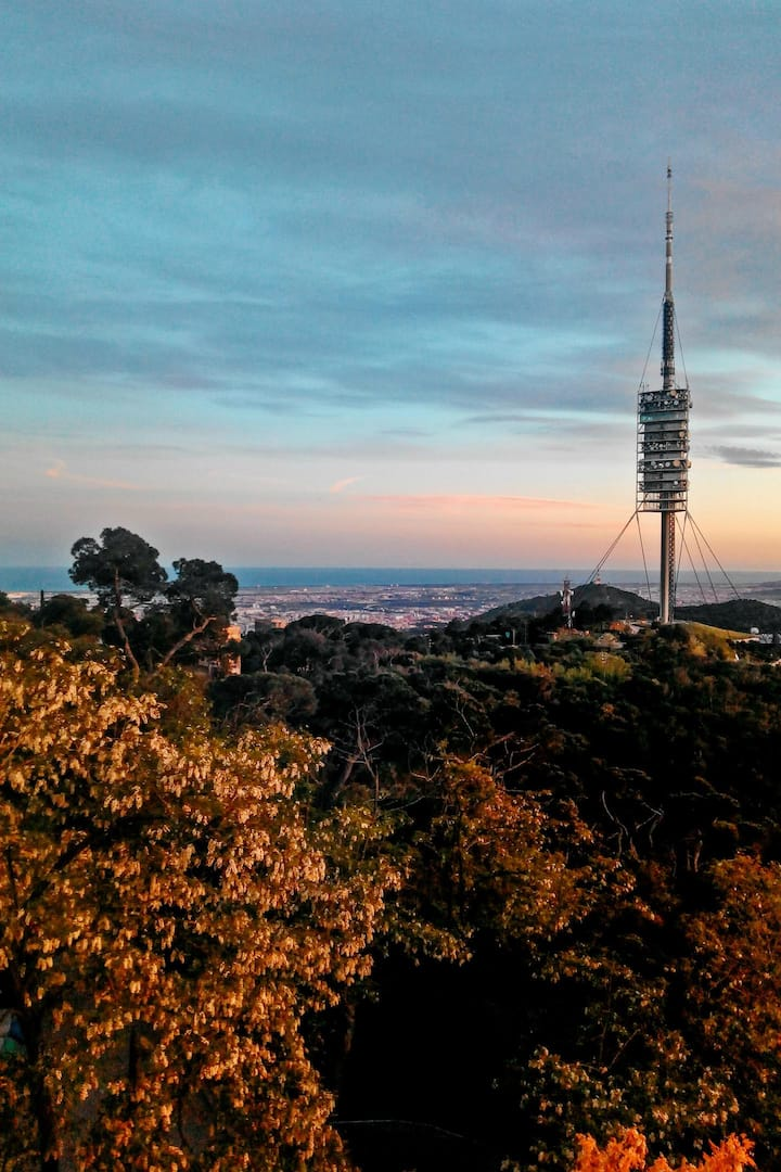 The Collserola Tower