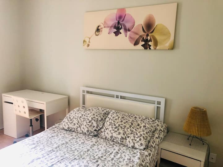 Lovely Plateau Apartment - Great for Students