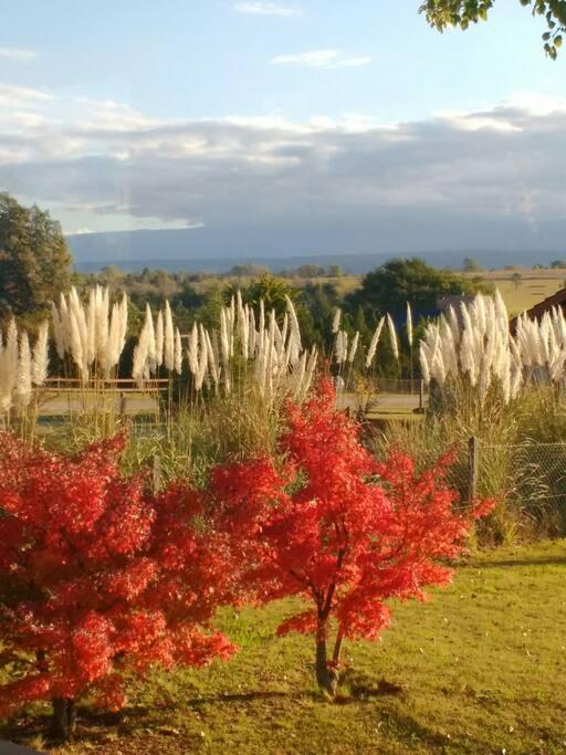 vista de la sierra en otoño desde el interior de la casa