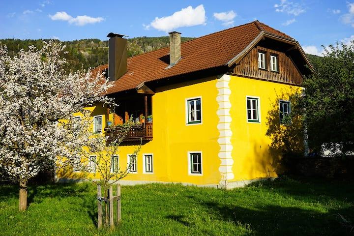 Charmante Wohnung in der Künstlerstadt Gmünd