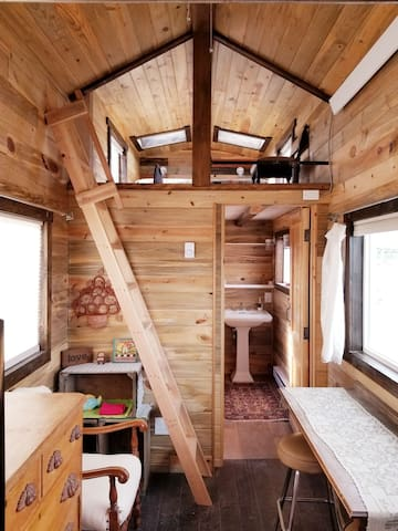 The Green Fish - Beetle Kill Pine Tiny House