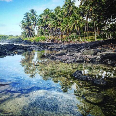 LightWorkers Paradise - Pāhoa