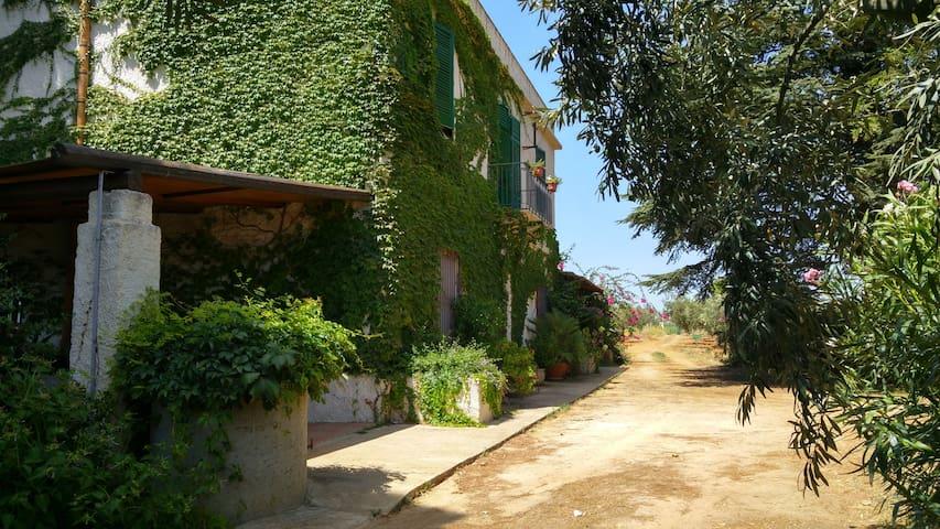 Casale di campagna vicino il mare di Selinunte - Selinunte - House