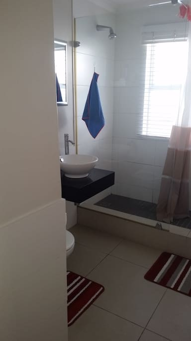 Shower and Toilet adjoining room