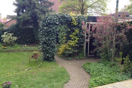 Alejandra's  B&B Green environment Huizen