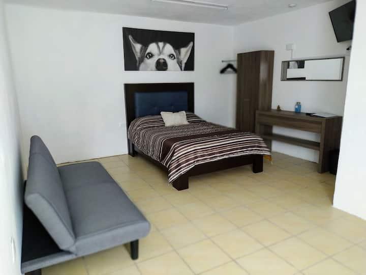 Hotel Alebrije Puebla Económico 204