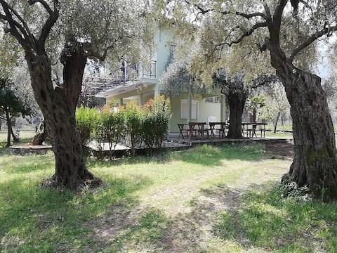 Golden Village, Chrisi Ammoudia, Thassos, Apart 2