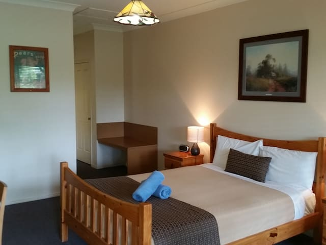 Bearded Dragon Queen Spa Room - Tamborine