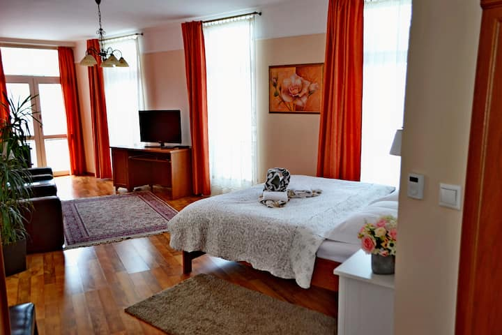 Studio Apartment with balcony, Rajecke Teplice