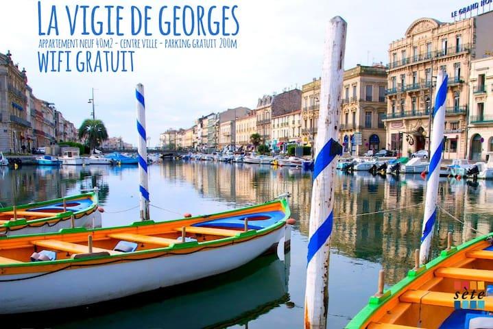 La VIGIE de GEORGES / 40m² NEUFS / Centre ville