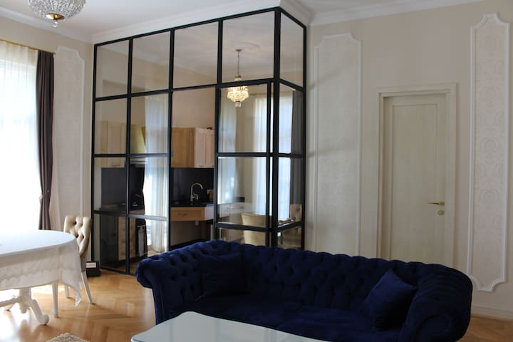 Luxurious Apartment in the City Center
