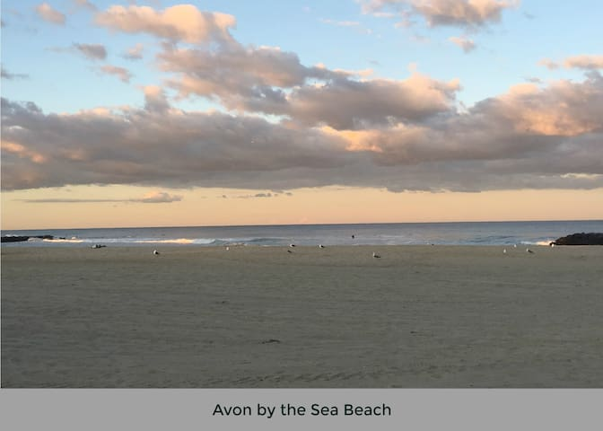 Avon by the sea 2018 with photos top 20 avon by the sea vacation avon by the sea 2018 with photos top 20 avon by the sea vacation rentals vacation homes condo rentals airbnb avon by the sea new jersey sciox Images