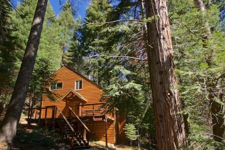 Yosemite Silvertip Lodge - Fish Camp - Ház