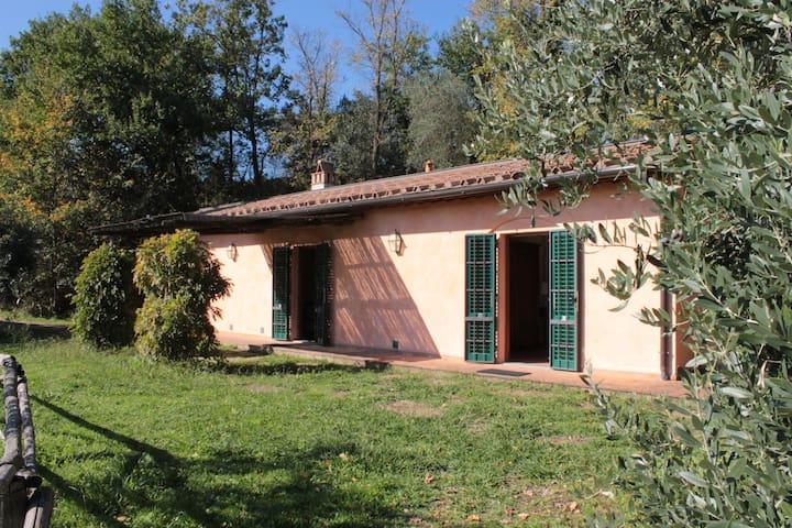 Villino Cavalli circondato da giardino e vigne - Montelupo fiorentino - Lägenhet