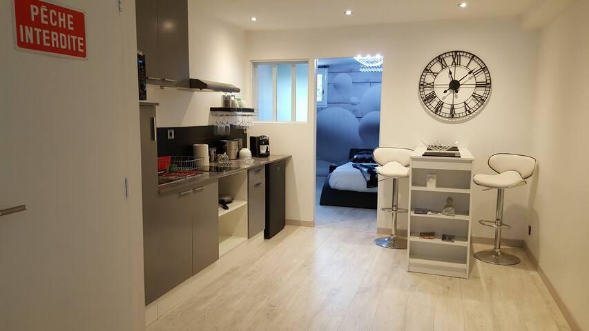 Appartement 40m² moderne, refait à neuf - ALBI