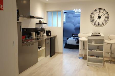 Appartement 40m² moderne, refait à neuf - ALBI - Albi
