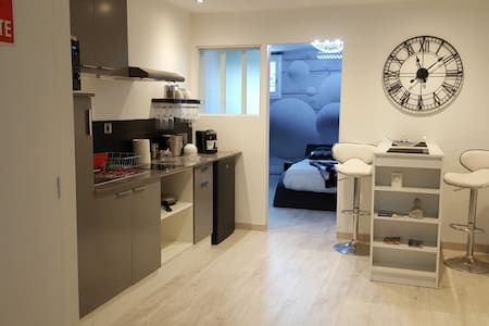 Appartement 40m² moderne, refait à neuf - ALBI - Albi - Lägenhet