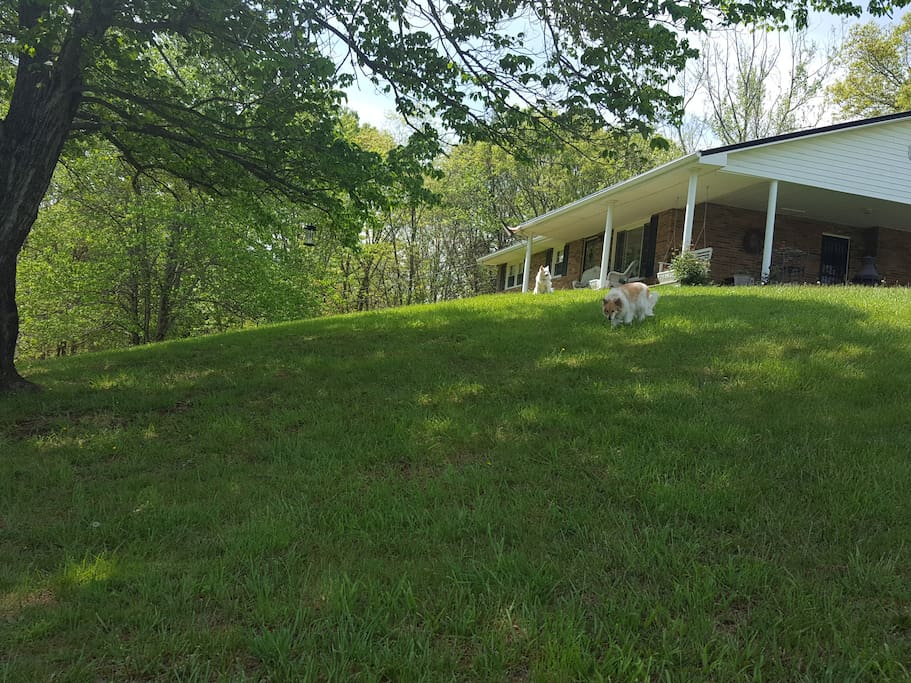 Windy hill houses for rent in jonesborough tennessee for Don hill motors kingsport tn