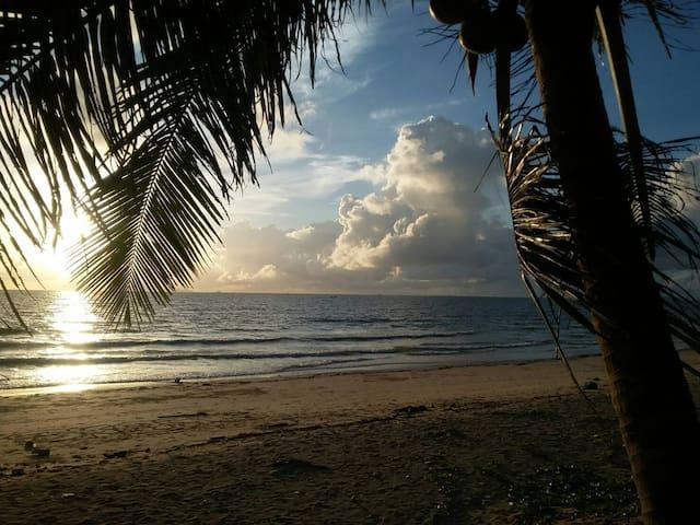 Chumphon near Koh Tao Private Beach Bungalow +desk - Saphli - Bungalow