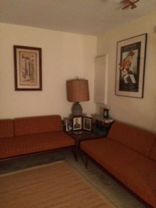 Family room -- both couches are for sleeping