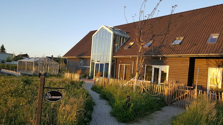 Double B&B-room near Schiphol and Amsterdam