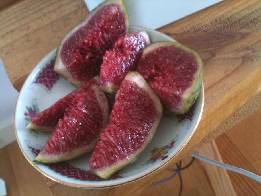 Luscious figs!