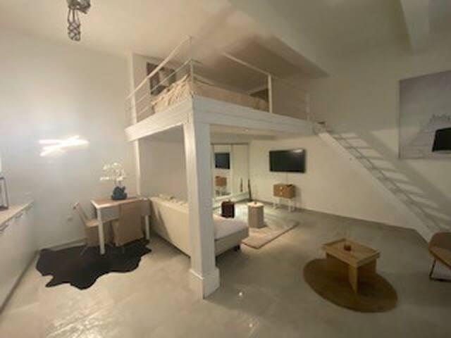 Loft design avec cours extérieur végétalisée