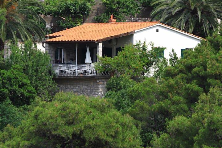 House Pavlica - Postira - House
