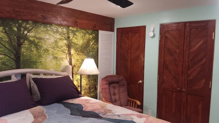 Bedroom w/ Amazon Alexa for music or sleeping sounds etc.  Overhead ceiling fan.  Closet with drawers.