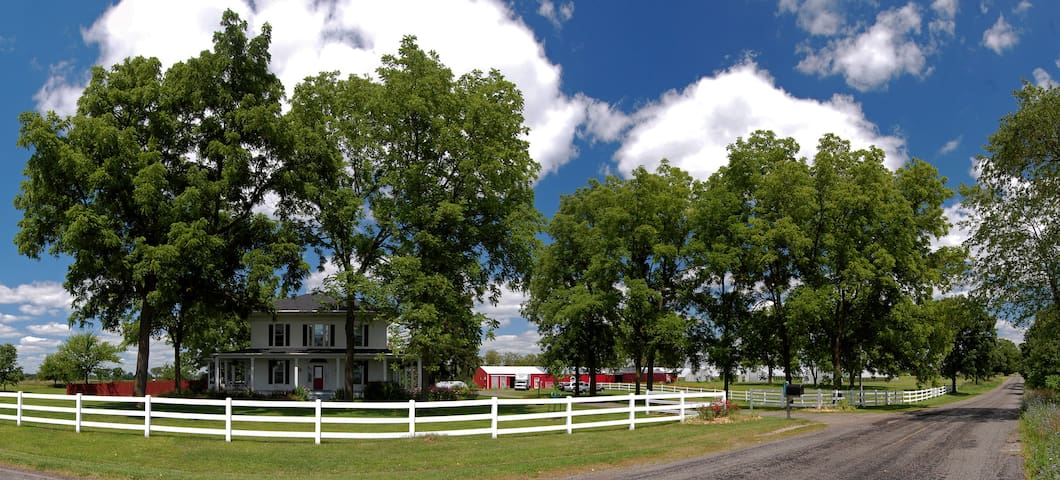 A summertime view of the farmscape.