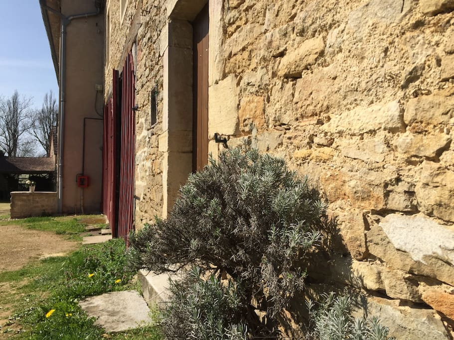 La cour d'entrée  Courtyard