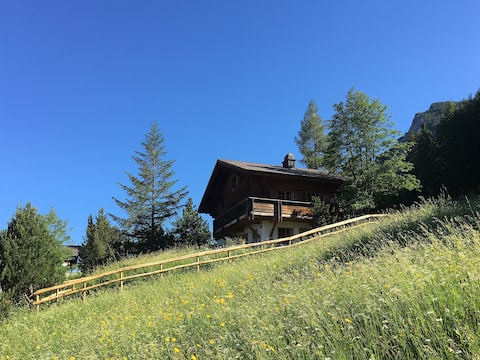Mountain Chalet in Liechtenstein