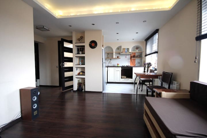 Modern fusion style apartment 2 min. to subway - Kiev - Appartement