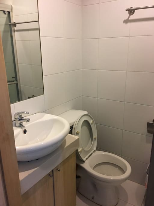Toilet and sink. Cabinet contains tissue, bucket and deeper.