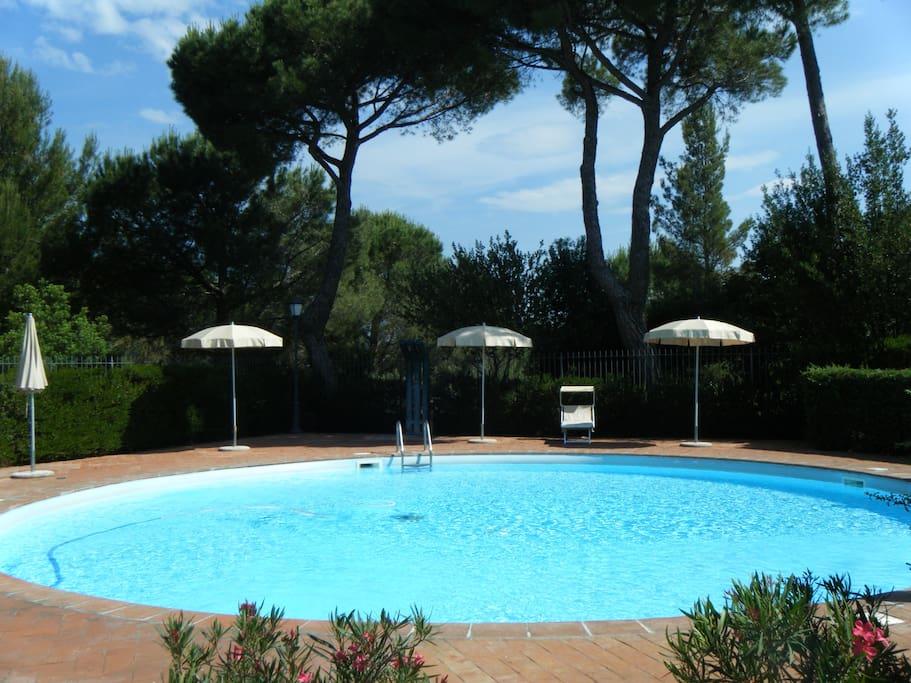 Appartamento con piscina appartamenti in affitto a san - Piscina san carlo ...