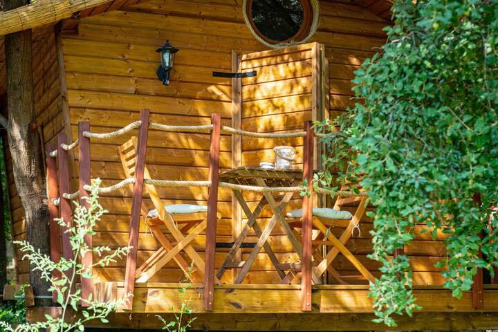 cabane  CAP CANAILLE  dans les arbres de cassis