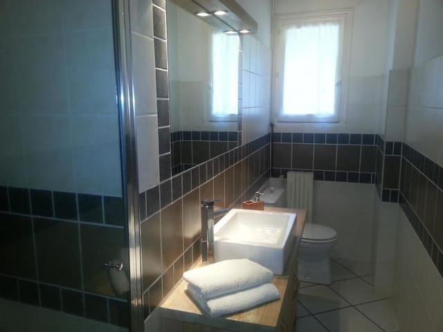 Salle de bain 1 (toilettes et douche)