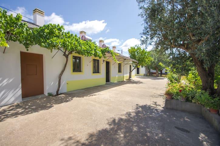 Oliveira Country House - Casa Verde - Figueira e Barros - Avis