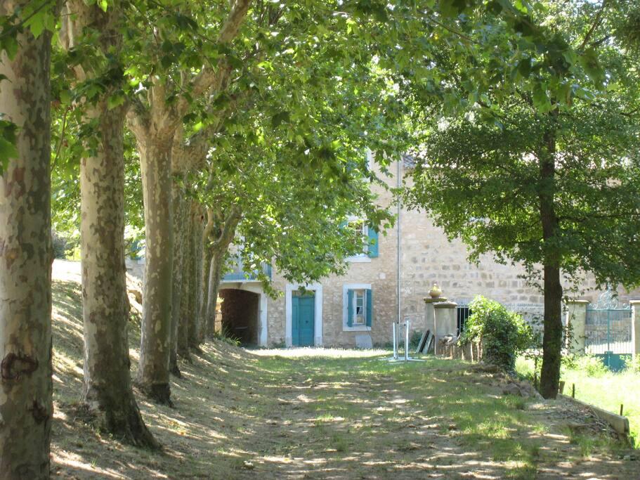 La treille chambre familiale petitd jeuner compris bed and breakfasts for rent in saint pierre - Chambre des metiers st pierre ...